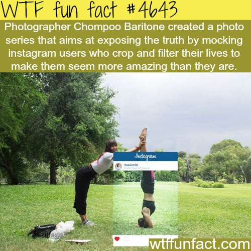 Attractive 328 Best Images About Facts On Pinterest Wtf Fun Facts, Funny And Mind Blown