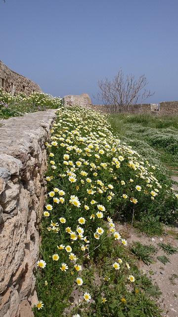 Rethymno, Crete. The old Venetian Fortress