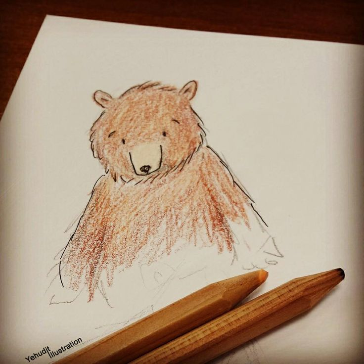 Lola bear Illustrated by Yehudit Goren