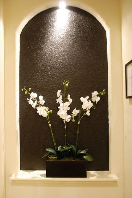 Orchid in niche