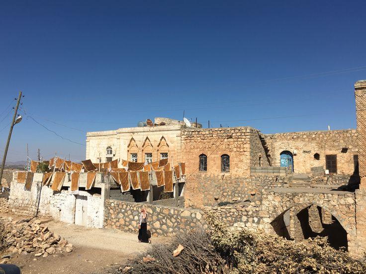 Taslica köyü,Ömerli,Mardin