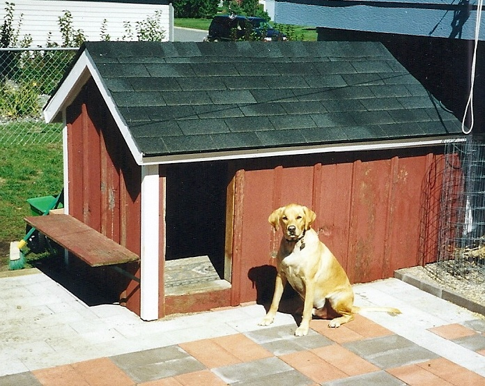 17 best images about heated dog house on pinterest for Dog house for labrador retriever