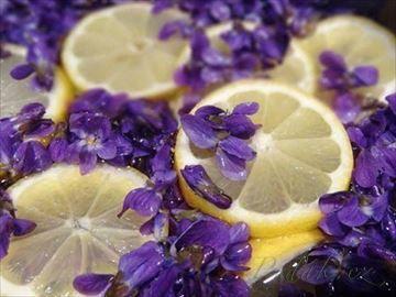 Zobrazit detail - Recept - Fialkový med