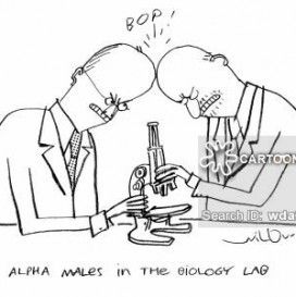 Funny biology cartoons Free Download Best HD 1080P
