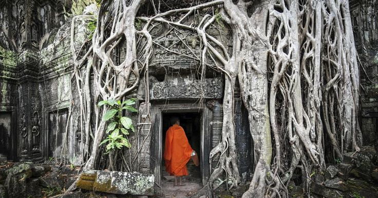 When the morning light washes over the overgrown temples and ruins of Angkor Wat, a simple Siem Reap sunrise becomes a profound event. The ancient structures are contained within one of the largest religious complexes in the world. #travelbuddy #traveldestinations #bestplaces