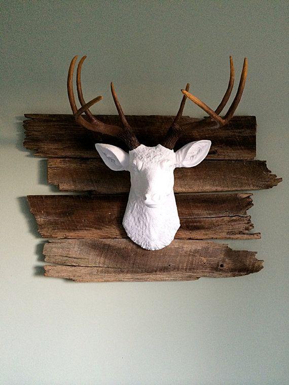 Best 25 Deer Mount Decor Ideas On Pinterest Deer Mounts