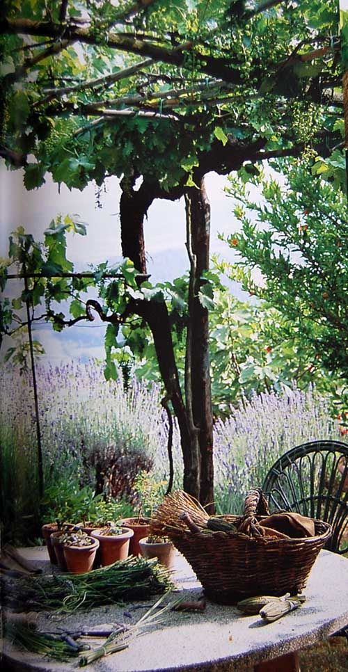 Provence style of living. Jerome Goignard