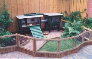 The most cost effective 10 DIY Back garden Projects That Any person Can Make 2
