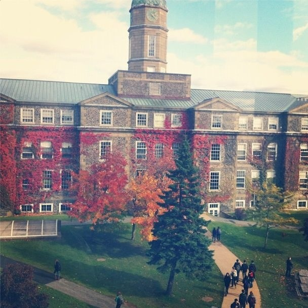 I miss my school, summer is too long Dalhousie University