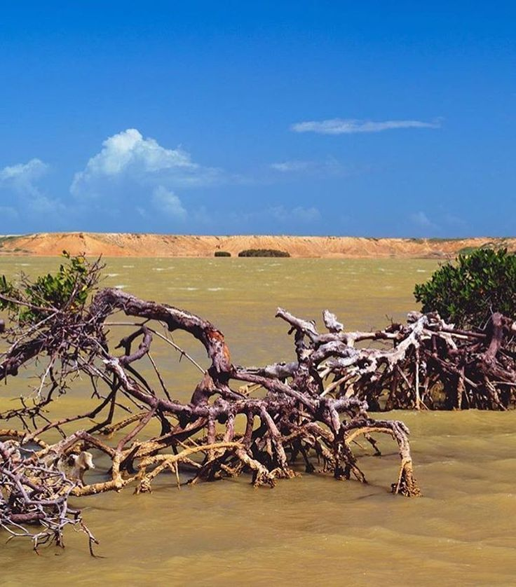 Bahía Hondita - Alta Guajira.   Fotografía; @hamacaymoka