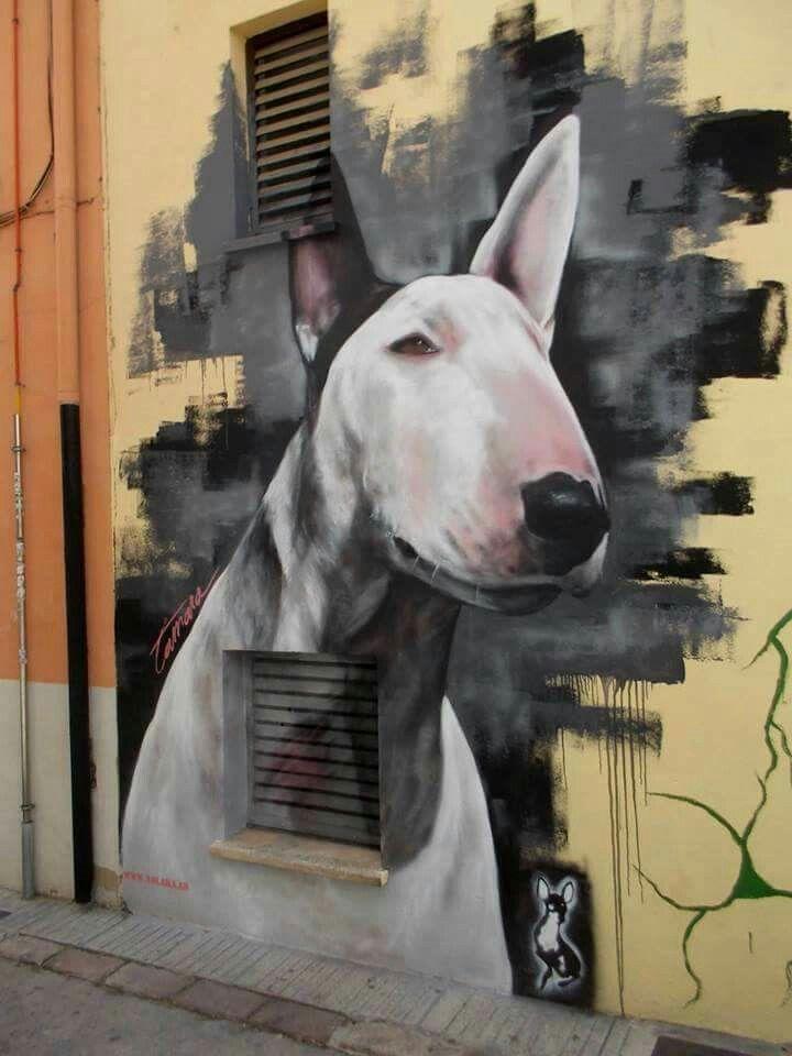 информация картинки граффити собака был