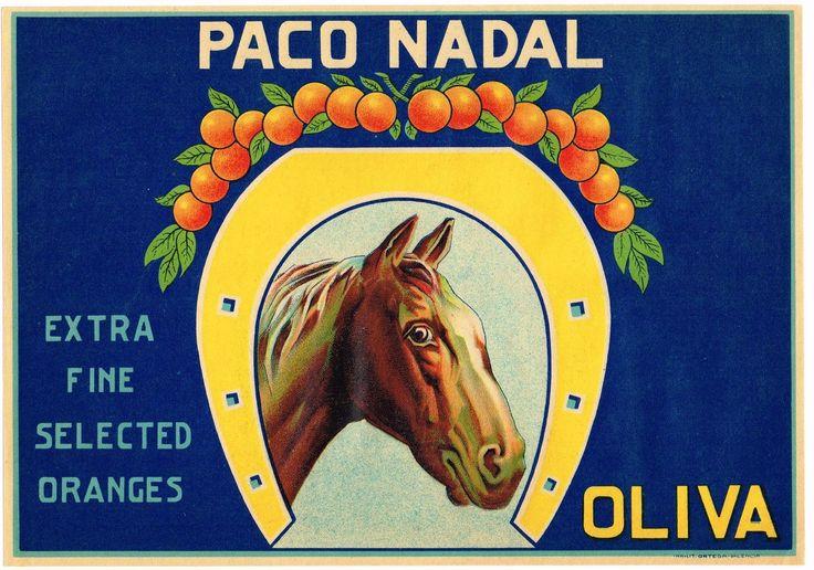 GENUINE ORANGE CRATE LABEL SPANISH SPAIN VINTAGE HORSE OLIVA 1940S EQUESTRIAN | eBay