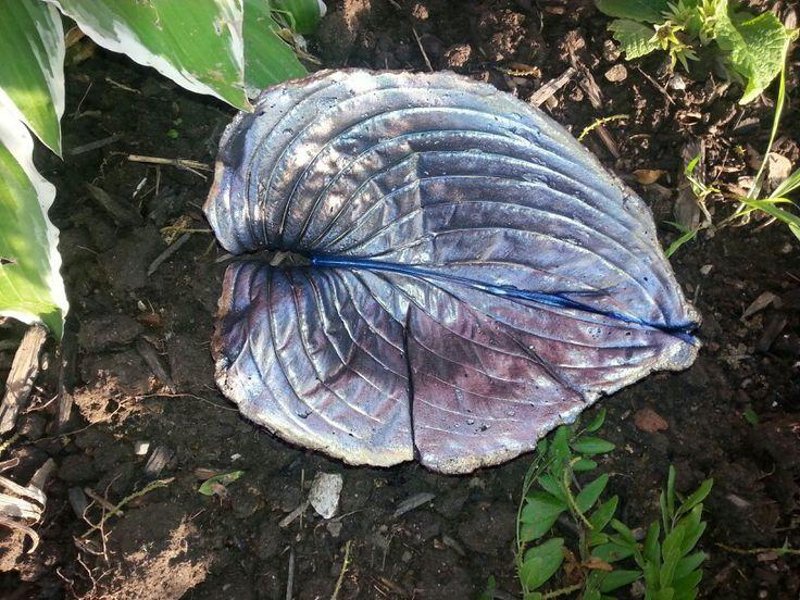 Hosta leaf casting