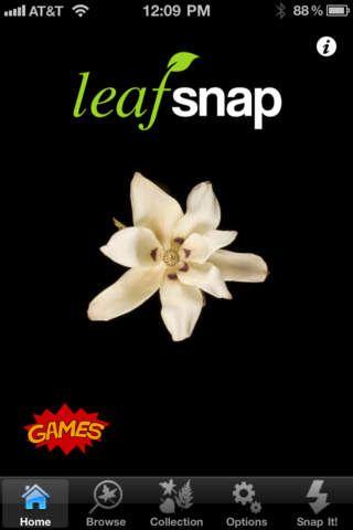 LeafSnap iPhone/iPad app.