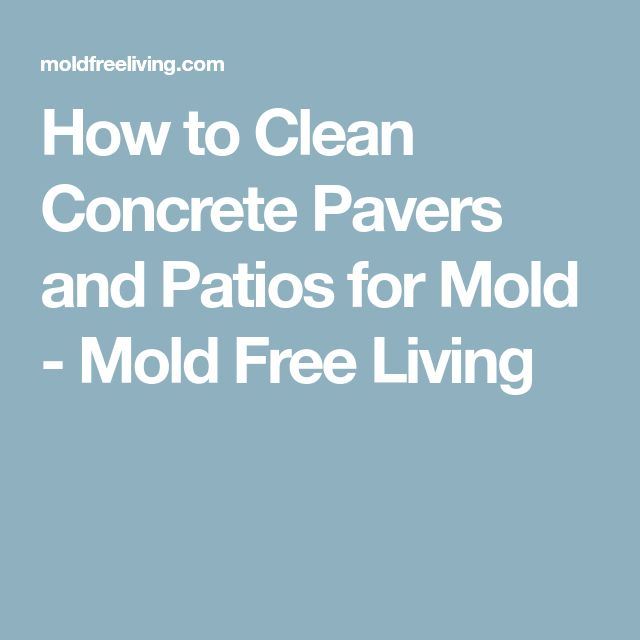 how to clean up mold on concrete