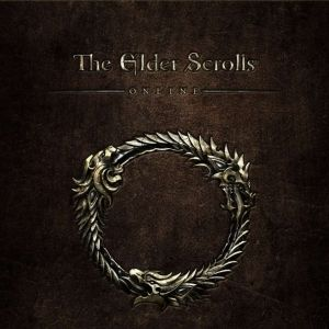 The Elder Scrolls Online review Readerâs Feature - With the news that the console versions have been delayed by six months a reader gives his assessment of Elder Scrolls Online on PC.