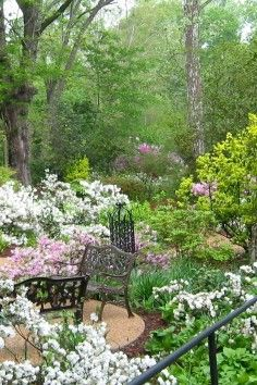 Mynelle Gardens, seven acres of green in Jackson, Mississippi!