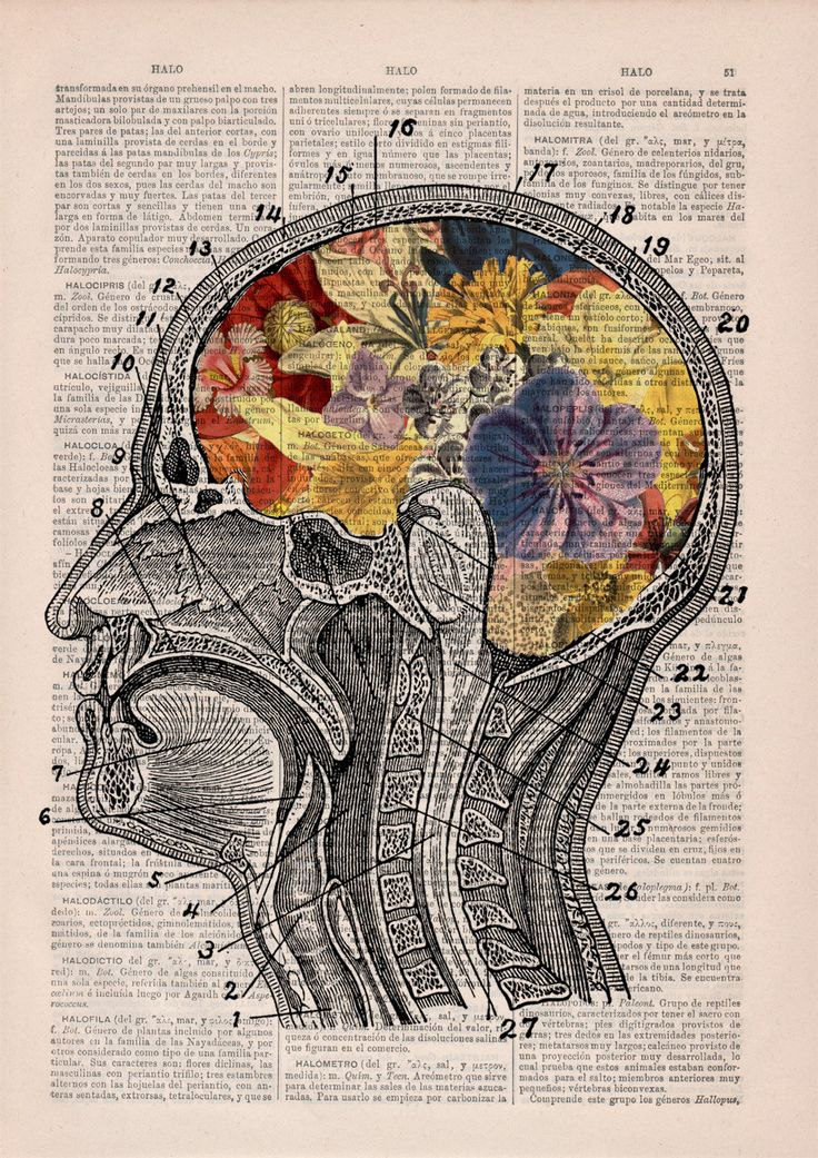 Psychologyis an academic andapplied disciplinethat involves thescientific studyofmental...
