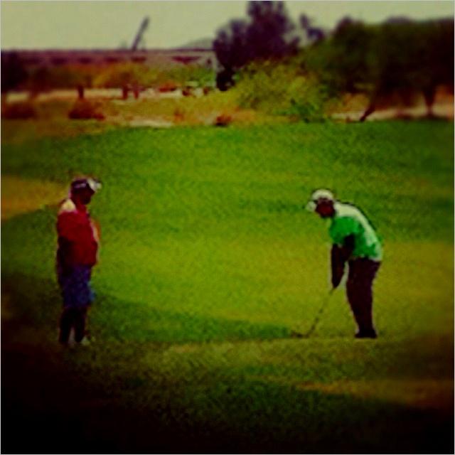 Golfing with poppy in the AZ