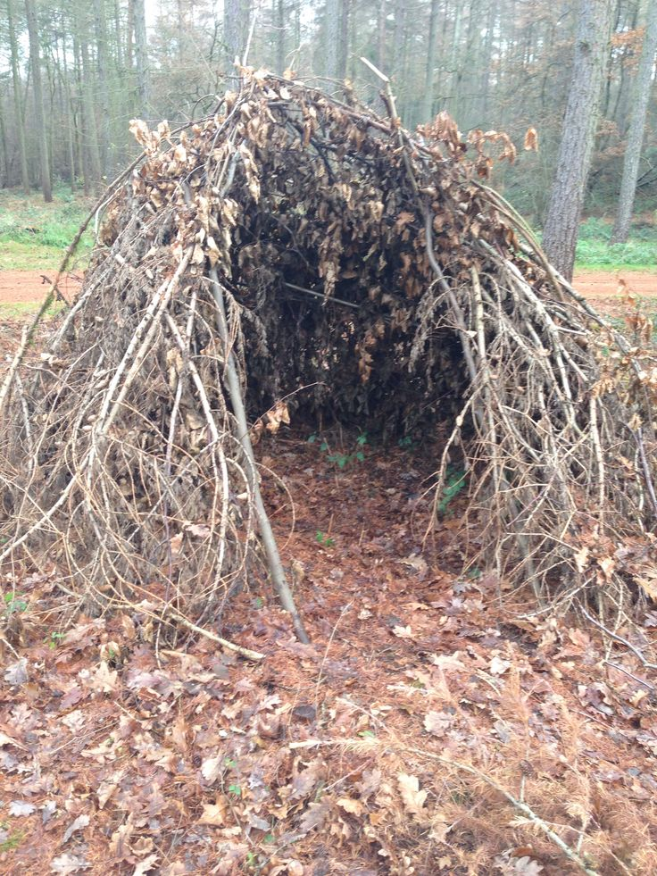 Natural den building in Forest School