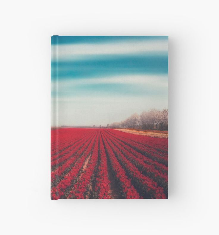 Field with red tulips near the river Rhine, Germany on a spring day. • Also buy this artwork on stationery, apparel, stickers, and more.