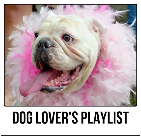Dog Lover's Playlist:  42 Songs For People Who Love Dogs
