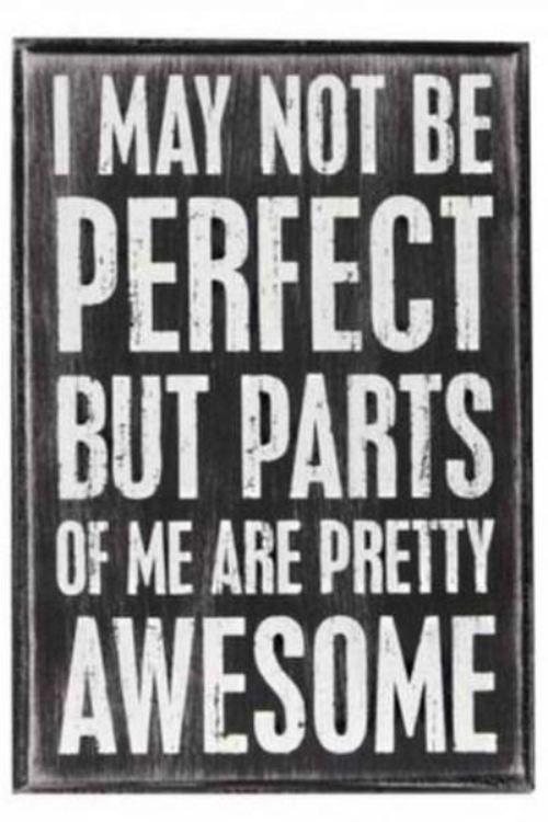 Quotes About Perfectionism | Potrei non essere perfetto ma parti di me sono pressoché fantastiche.