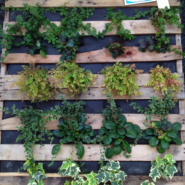 Hanging Crate flower bed