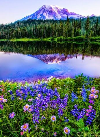 Beautiful Lake and Wonderful Mountain