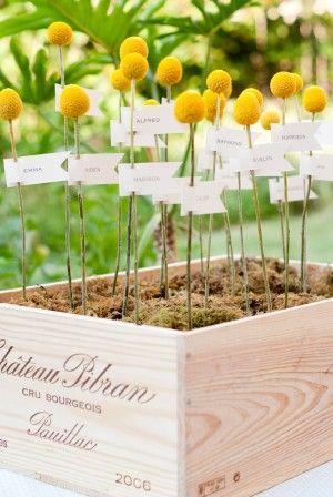 DIY-Billy-Ball-Moss-Escort-Card-Display | photography by http://www.lilyredstudio.com  Die Blumen gießen Craspedia und sind anscheinend das ganze Jahr über erhältlich.