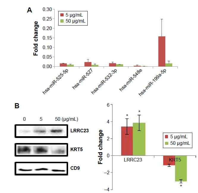 Figure 4 Fold changes of exosomal biomarkers for PbS–MPA exposure to HE K293 cells.