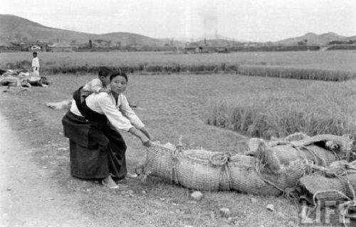 Carl Mydans(1907~2004), 장소는 여수 혹은 순천, 찍은 날짜는 1948년 10월19일 이후 어느 날. 사진과 기사가 실린 건 미국 사진 잡지 LIFE(15 November 1948) 'Revolt in Korea'.