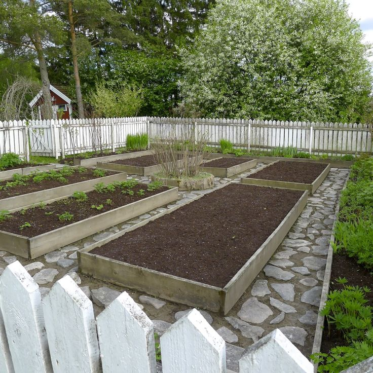 beautiful raised beds kitchen gardens planting