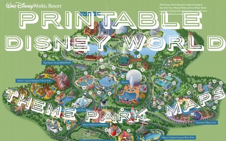 Something that can certainly help you in planning your day in Disney is a park map.  To get you started, here are the links to the maps for the Walt Disney World theme parks.  Each is printable, ma...