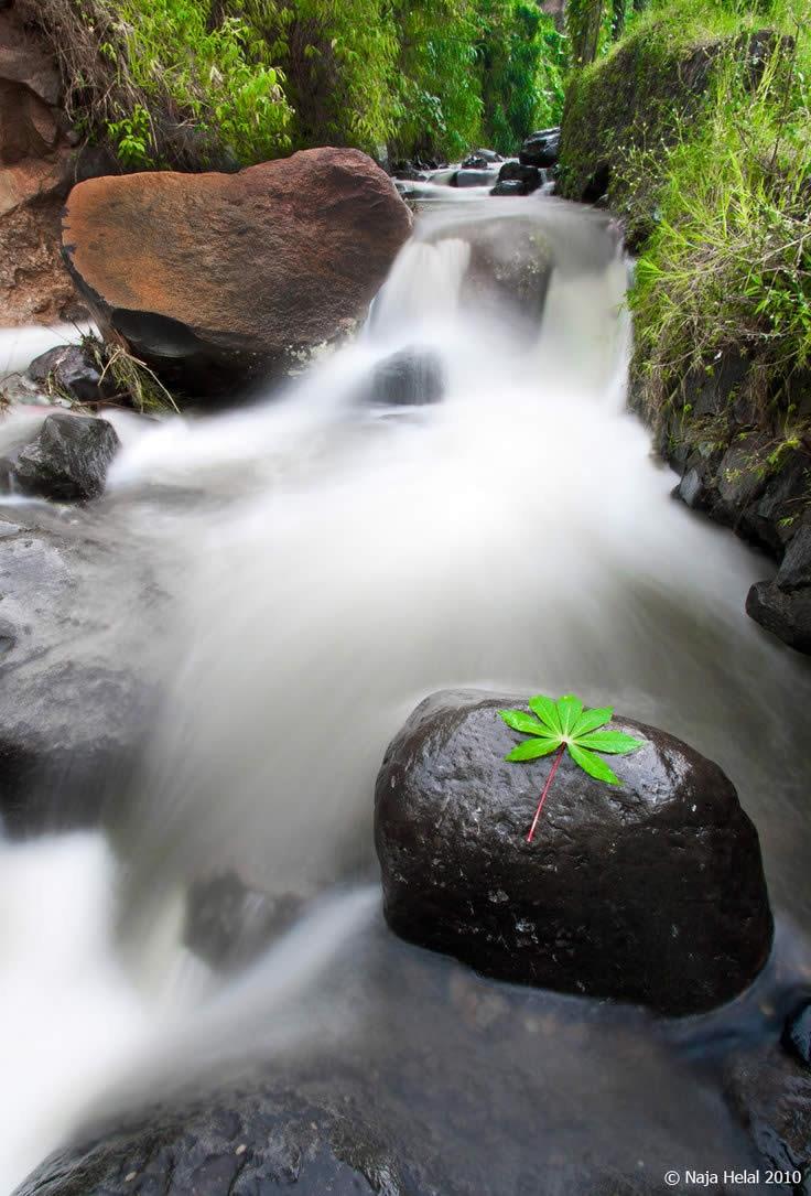 Rio Puncak en Indonesia