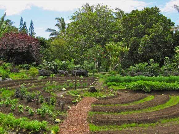 2º AgroecoWeb – Congresso Internacional Online de Agroecologia e Permacultura, no período de 04 de Outubro a 10 de Outubro de 2017. Leia mais no site!
