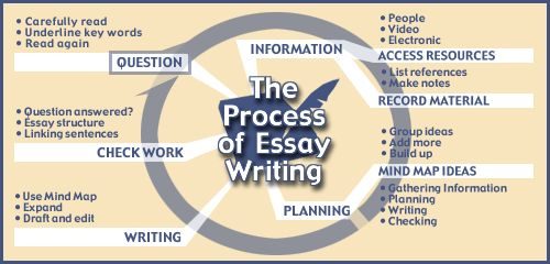 essay writing  essay tips and writing an essay on pinterest