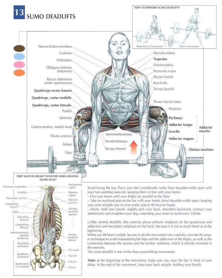 Sumo Deadlift ~ Re-pinned by Crossed Irons Fitness