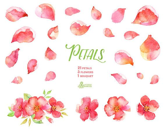 Aquarell Blütenblätter 25-Elemente Blumenstrauß von OctopusArtis