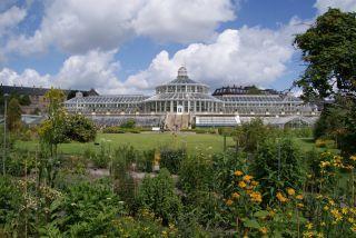 palmenhaus- Perfekter Ort inmitten der Stadt - Botanischer Garten der Universität Kopenhagen - - -