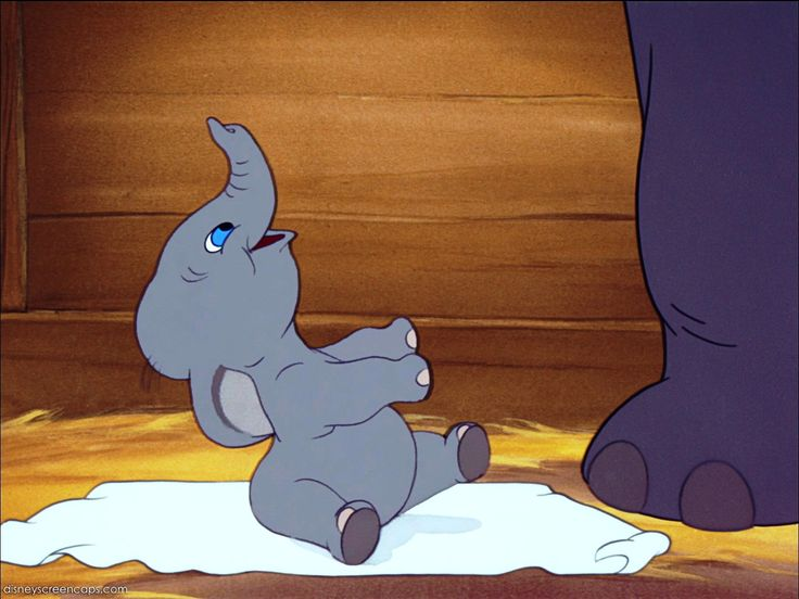 Baby Dumbo...so cute!