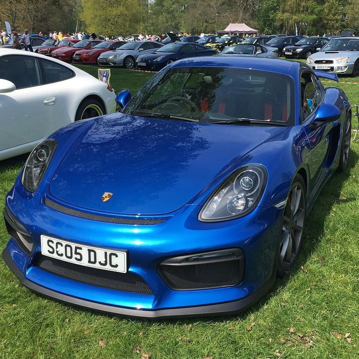 Immaculate blue Porsche Cayman GT4 at Cars in the Park