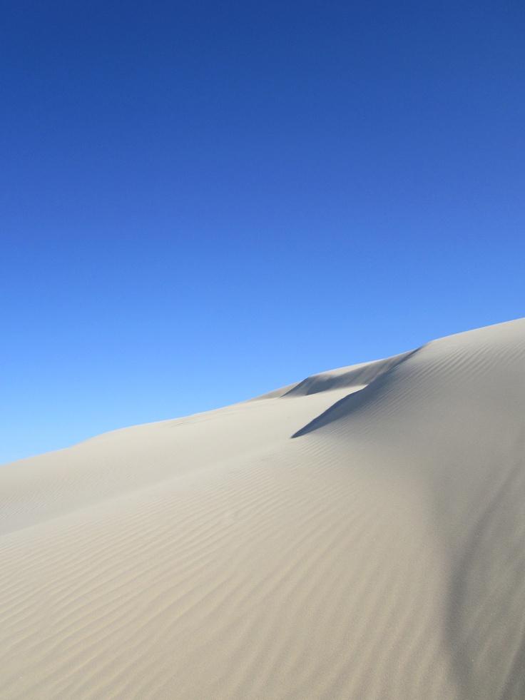 Dunes near Nelson Bay, NSW