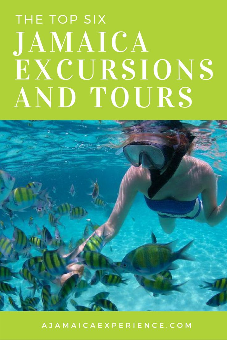 Top 6 Jamaica Excursions for an Amazing Trip