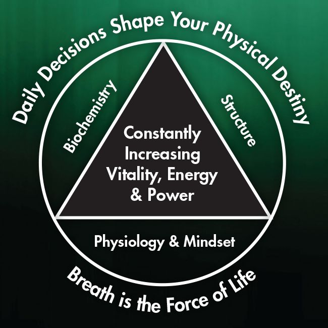 Physical Master is a result of constantly improving the five key components of health (the five core elements of the pyramid): daily decisions, breath, biochemistry, structure and physiology & mindset.