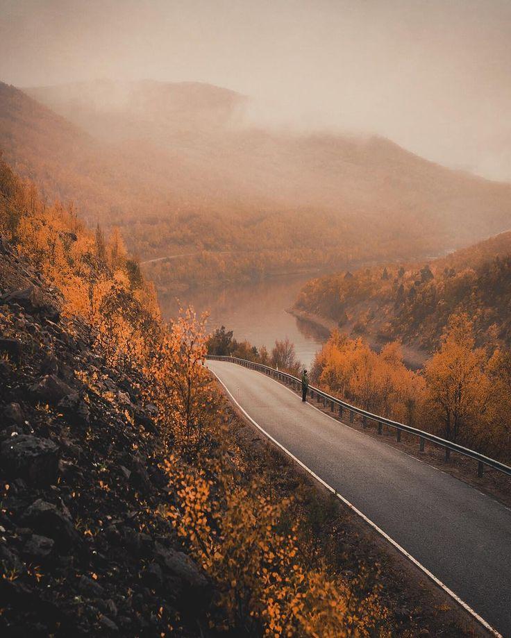 Photo by Konsta Punkka @kpunkka instagram Nuvvus, Finnish Lapland. #filmlapland #nuvvus #arcticshooting #foliage #autumn kpunkka~ Drove the most beautiful road in Finland from Karigasniemi to Utsjoki today and the autumn colors where just crazy gorgeous.