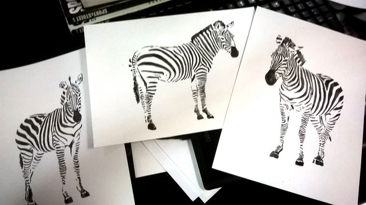 Zebras Watercolor - By : KP