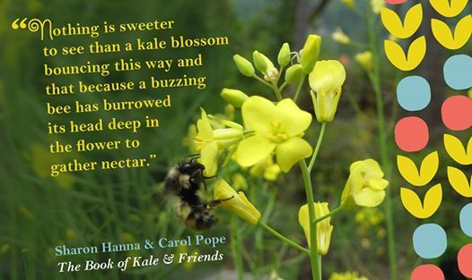 Please remember to support the bees...