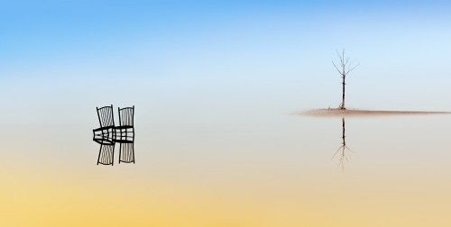 Two chairs and a tree by Juan Luis Duran