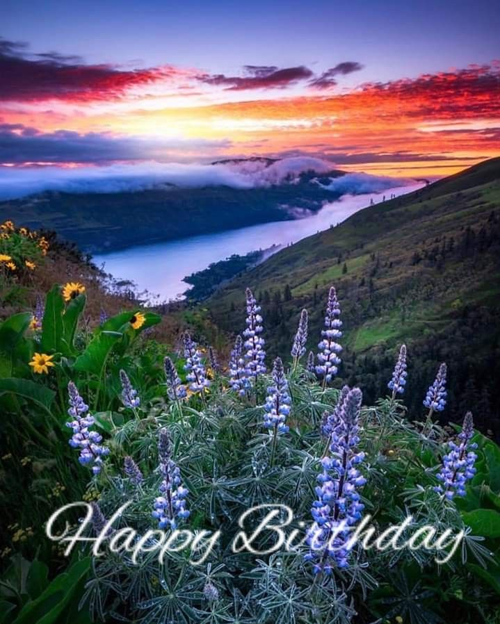 Pin By Lenka Awad On Happy Birthday Quotes With Images